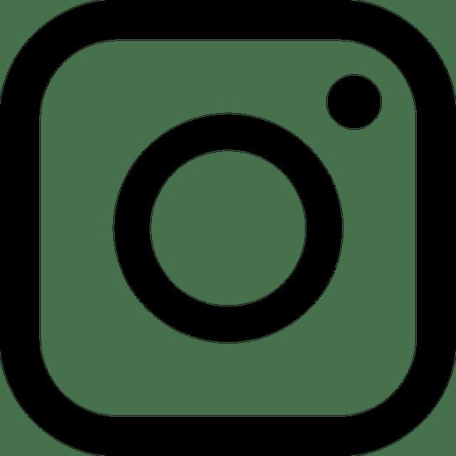 icon-essential-instagram